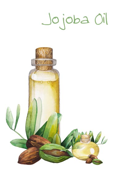 Jojoba Oil Cover